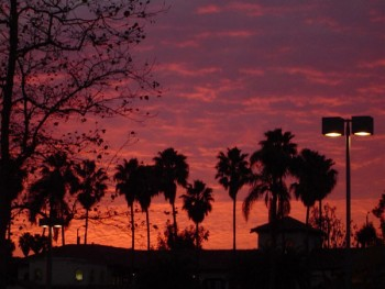 californian_sunset